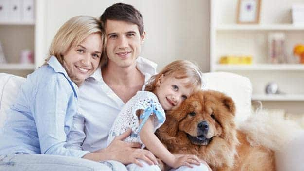 Wills & Trusts dog-young-family Direct Wills Southall